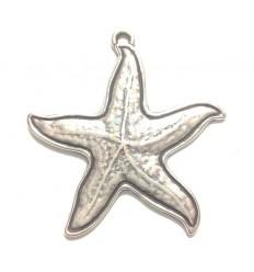 Estrella de mar plateada